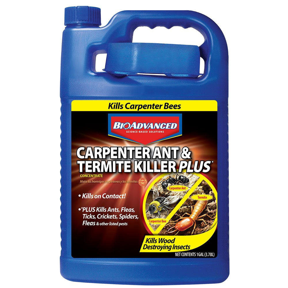 Bayer Advanced 700315 Carpenter Ant and Termite Killer Plus Concentrate, 1-Gallon by BioAdvanced