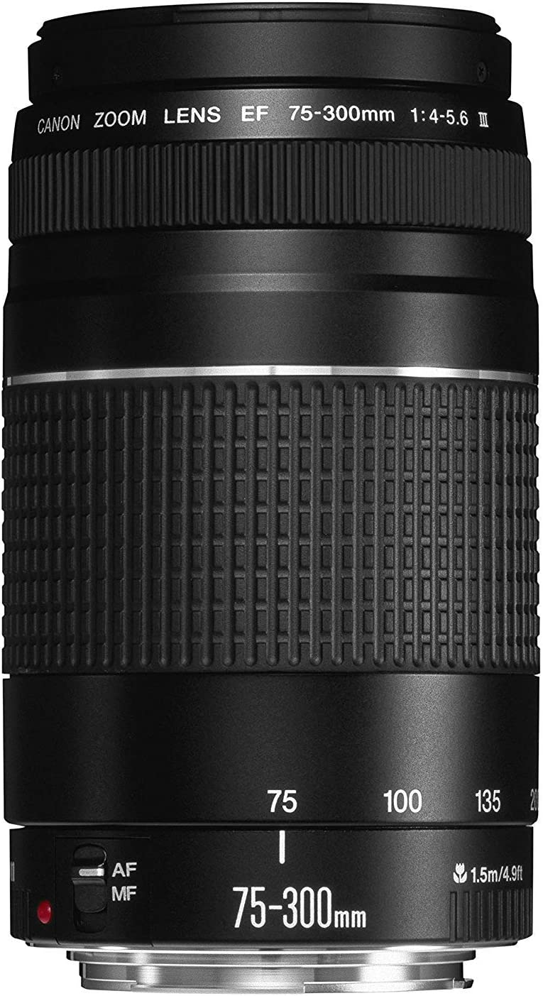 B00004THD0 Canon EF 75-300mm f/4-5.6 III Telephoto Zoom Lens for Canon SLR Cameras 71ioO3WHJTL.SL1500_