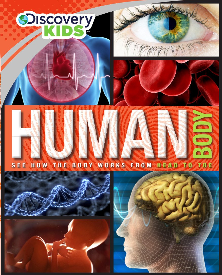 Amazon.com: Human Body (Discovery Kids) (9781472376756): Parragon ...