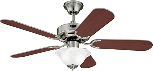 Westinghouse Lighting 7877365 Richboro SE Two-Light 42-Inch Reversible Five-Blade Indoor Ceiling Fan
