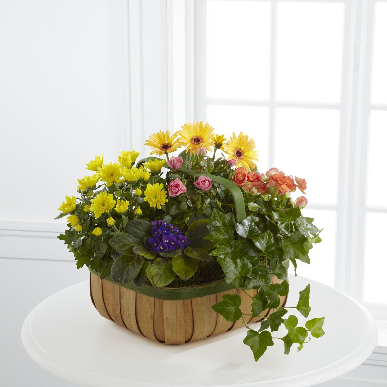 Gentle Blossoms Basket - Fresh Flowers Hand Delivered in Albuquerque Area