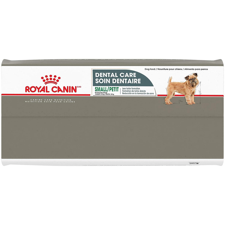 Amazon.com: Royal Canin Dental Care comida seca para perros ...
