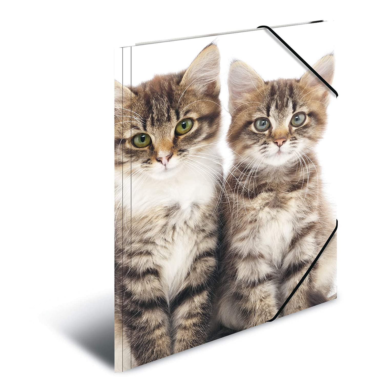 1 Zeichenmappe f/ür Kinder HERMA 7144 Sammelmappe DIN A3 Tiere Hunde aus stabilem Kunststoff mit bedruckten Innenklappen Gummizugmappe Eckspanner-Mappe