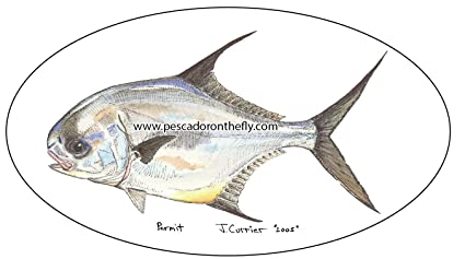 Amazon com: Permit, Tarpon, Bonefish, Snook, Redfish