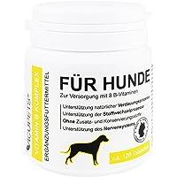 Vicupets Vitamin B Komplex für Hunde | 8 B-Vitamine und Mineralstoffe | für alte (senior) Hunde und junge (junior) Welpen | Made in Germany | 120 Stück