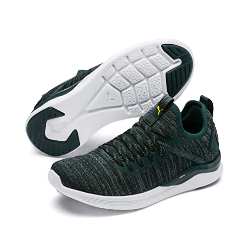 skate shoes get new 100% quality Puma Unisex-Kinder Ignite Flash Evoknit Jr Sneaker: Amazon ...
