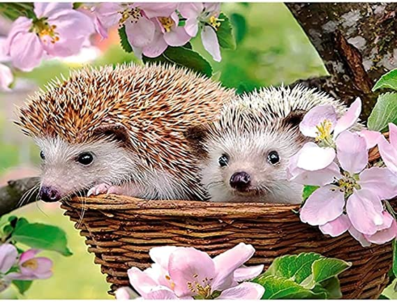 Beauty Round Drill 5D Embroidery Painting Little Hedgehog Craft Work Souvenir