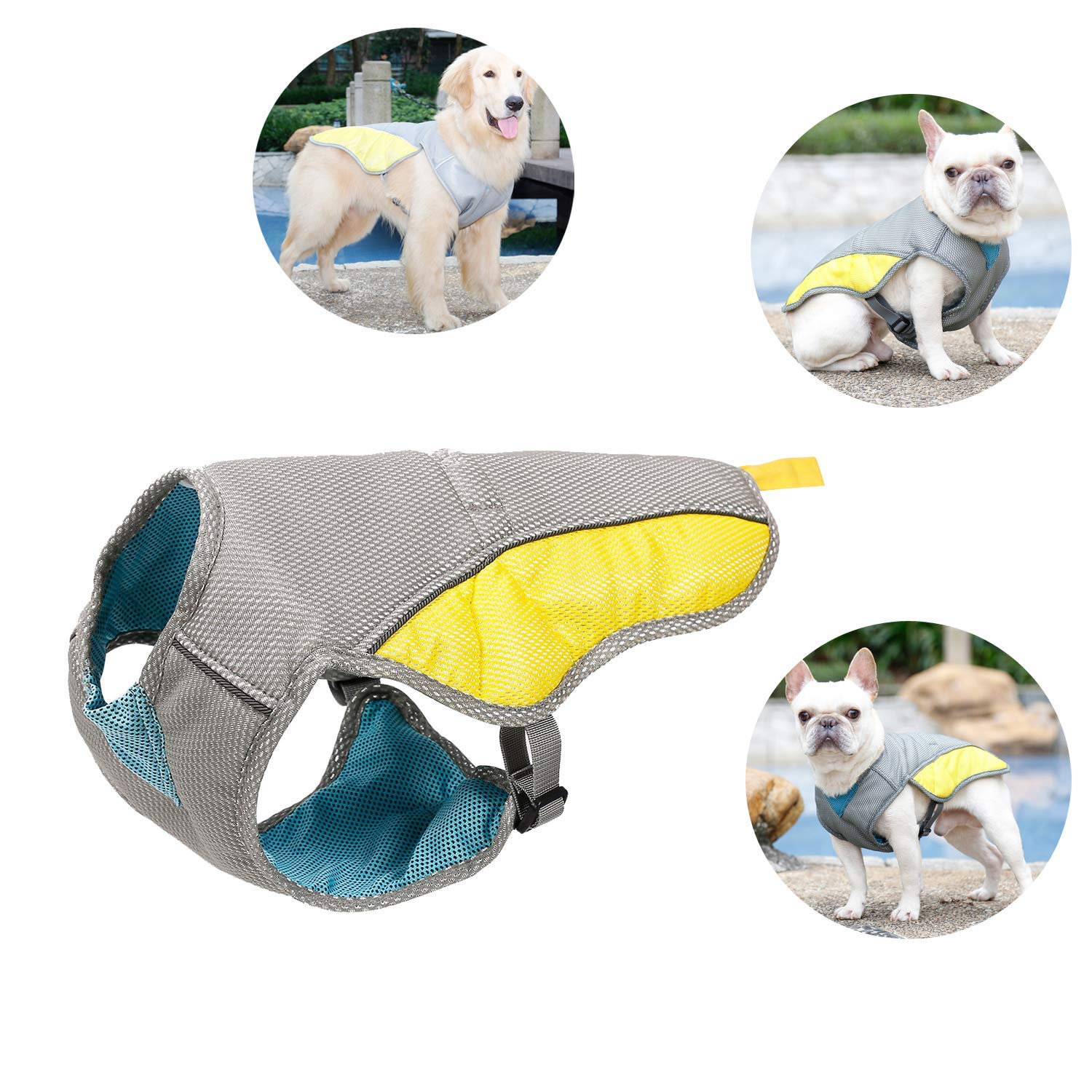 Tomister Pet Cooling - Chaleco Reflectante para Perros pequeños ...