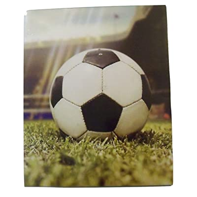 Staples Two Pocket Paper Folder ~ Soccer Folder (End of Game): Toys & Games