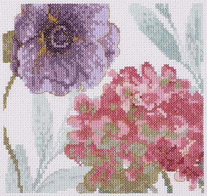 Amazon.com: Kit de punto de cruz DMC – Flores de arcoíris ...