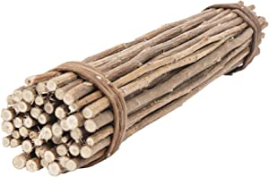 Ware Manufacturing Natural Willow Mega Munch Sticks Small Pet Chew Treat