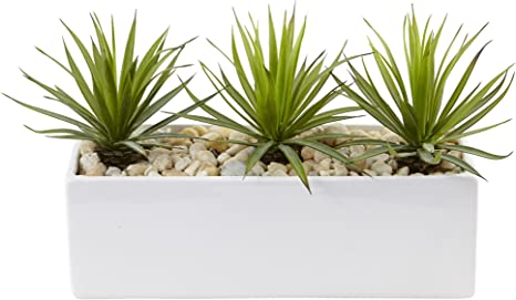 Nearly Natural Mini Agave Artificial Plant In Rectangular Ceramic Green Home Kitchen