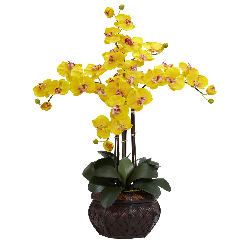 Yellow Nearly Natural 1211-CR Phalaenopsis with Decorative Vase Silk Flower Arrangement, Cream
