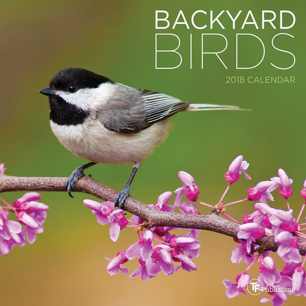 2018 backyard birds mini calendar tf publishing 9781683751229