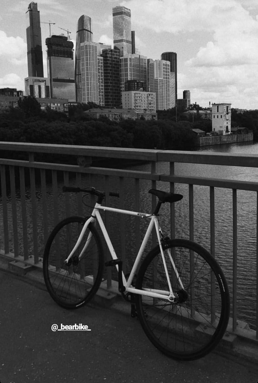 Bear Bike Stockholm New Fixed Gear Single-Speed Fixie Urban Bike