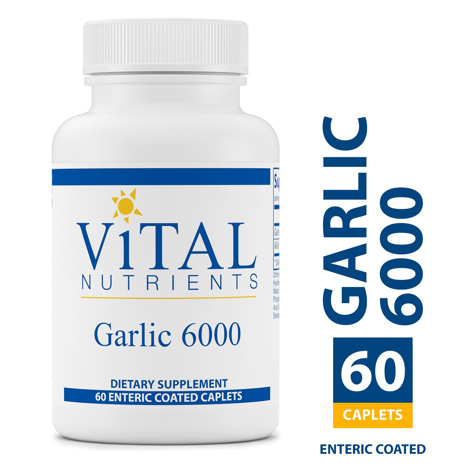Vital Nutrients - Garlic 6000 - Cardiovascular, Immune, and Cholesterol Level Support - 60 Enteric Coated Capsules per Bottle