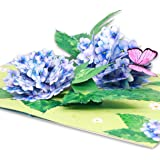 Liif Hydrangea Blossoms Butterfly 3D Greeting Pop Up Card, Mother's Day Card, Spring, Summer, Anniversary, Fathers Day…