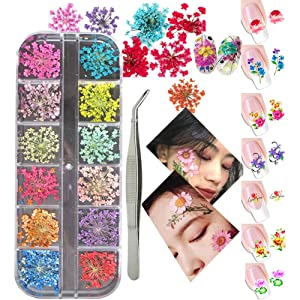 3D Nail Art Decoration Kits, 24pcs 12 Colors Nail Dried Flowers, 8 Sheet Floral Nail Art Stickers Decals, Curved Tweezers, Polish Pressed Dry Flowers Water Decal Manicure Design Tools Set (Luck011B)