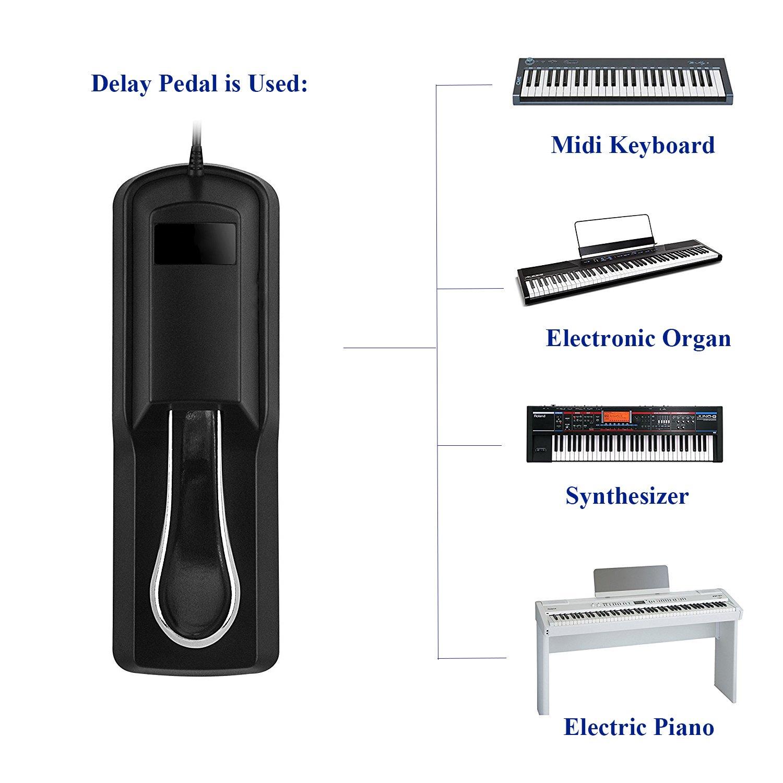 Amazon.com: MaxLLTo Sustain Pedal for Roland Juno Series keyboard synthesizer Juno-1 / Juno--2 / Juno-6 / Juno-60 / Juno--106 / Juno--D / Juno--DS61 ...