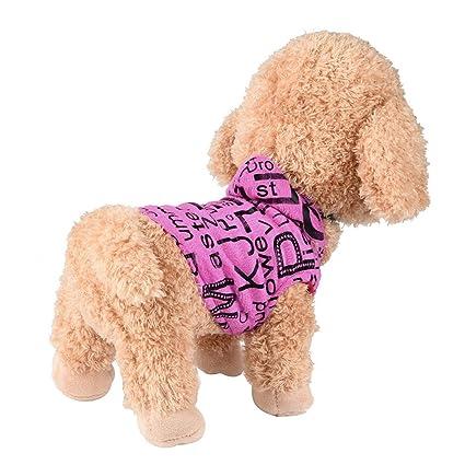 amazon com mikey store newborn pet teacup poodles vest small