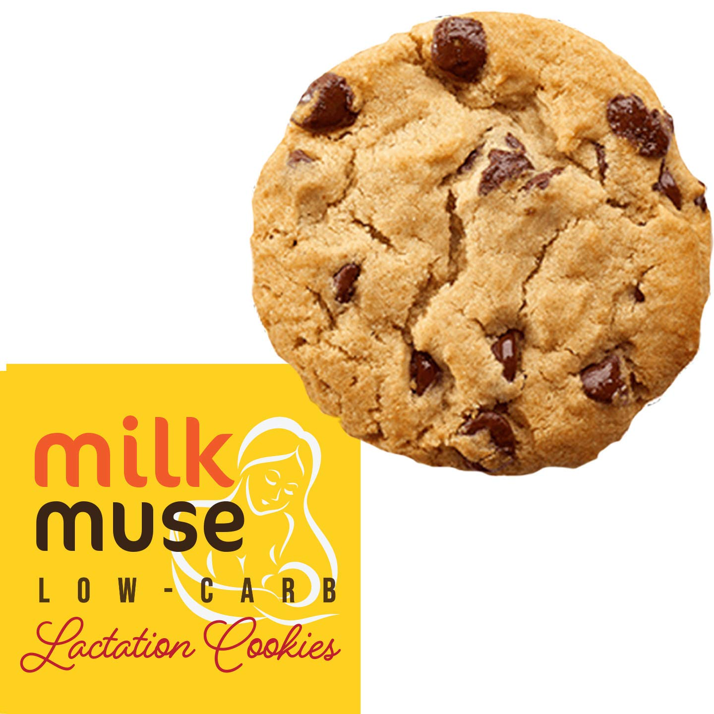 Low Carb Lactation Cookies MilkMuse - No Sugar, Gluten Free & Keto Snacks to Increase Milk Supply | with Almonds, Coconut, Brewer's Yeast & Fennel - Box with 6 packs, 12 Cookies (Chocolate Chip) by MilkMuse