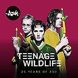 Teenage Wildlife - 25 Years Of Ash [Analog]