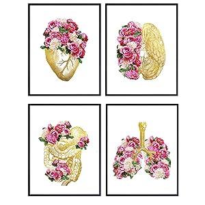 Heart, Lungs, Brain, Anatomy Floral Art Print Set - Boho, Bohemian Vintage Medical Wall Art Decor for Bedroom, Living Room, Doctor Office - Shabby Chic Gift for Women, Nurse, RN, CNA - 8x10 UNFRAMED