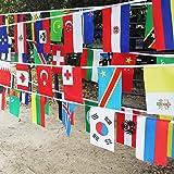 Banderole avec différents drapeaux nationaux - 14 x 21cm - Parfait pour les fans de football ou de rugby, 100 National Flags