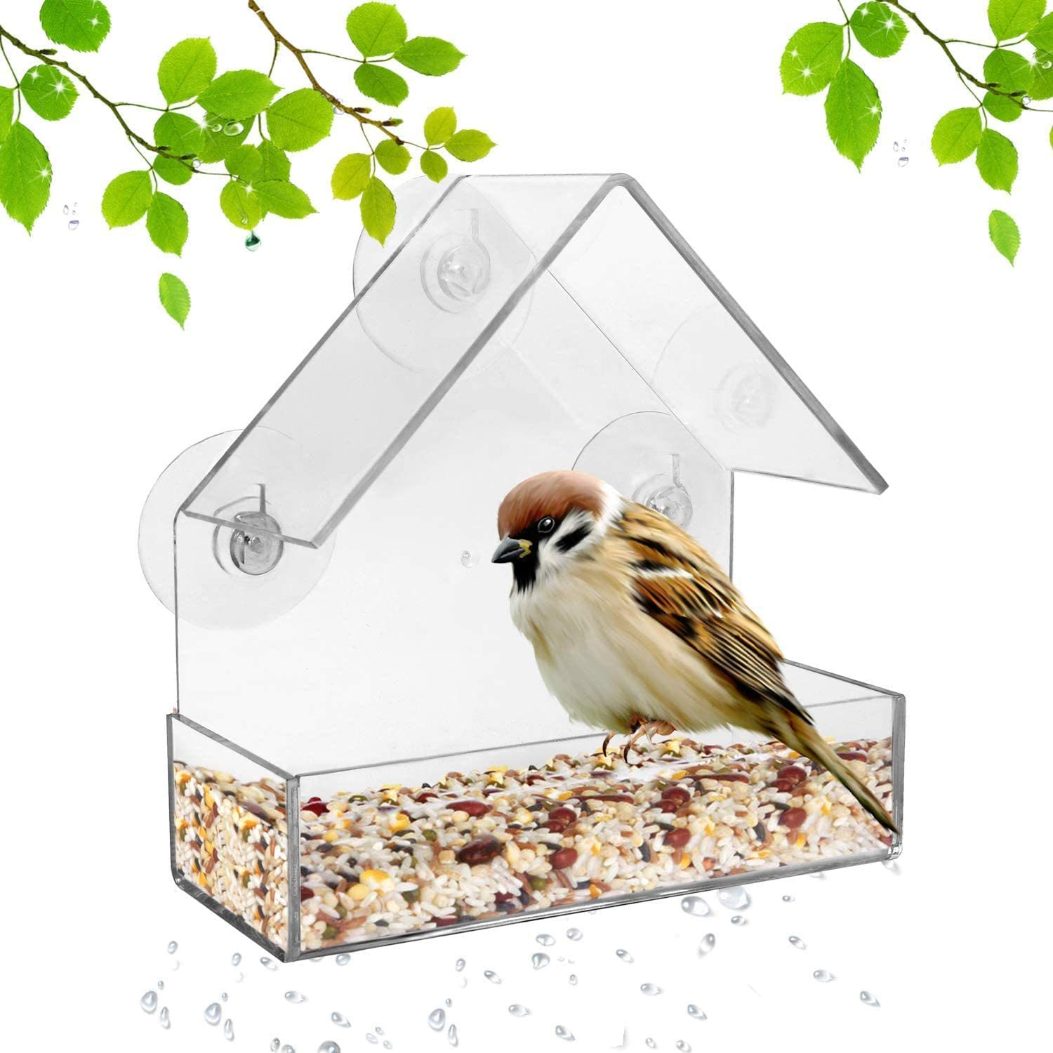 Parkland Clear Acrylic Glass Window Bird Feeder Table Seed Peanut Tray Hanging Perspex Clear For Transparent Viewing Small Compact With 3 Suctions Cups Amazon Co Uk Garden Outdoors