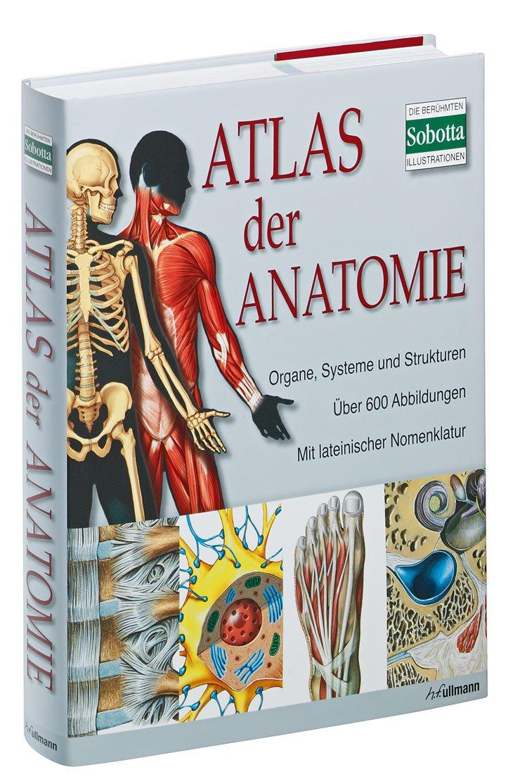 Atlas der Anatomie: Der menschliche Körper und seine Systeme: Amazon ...