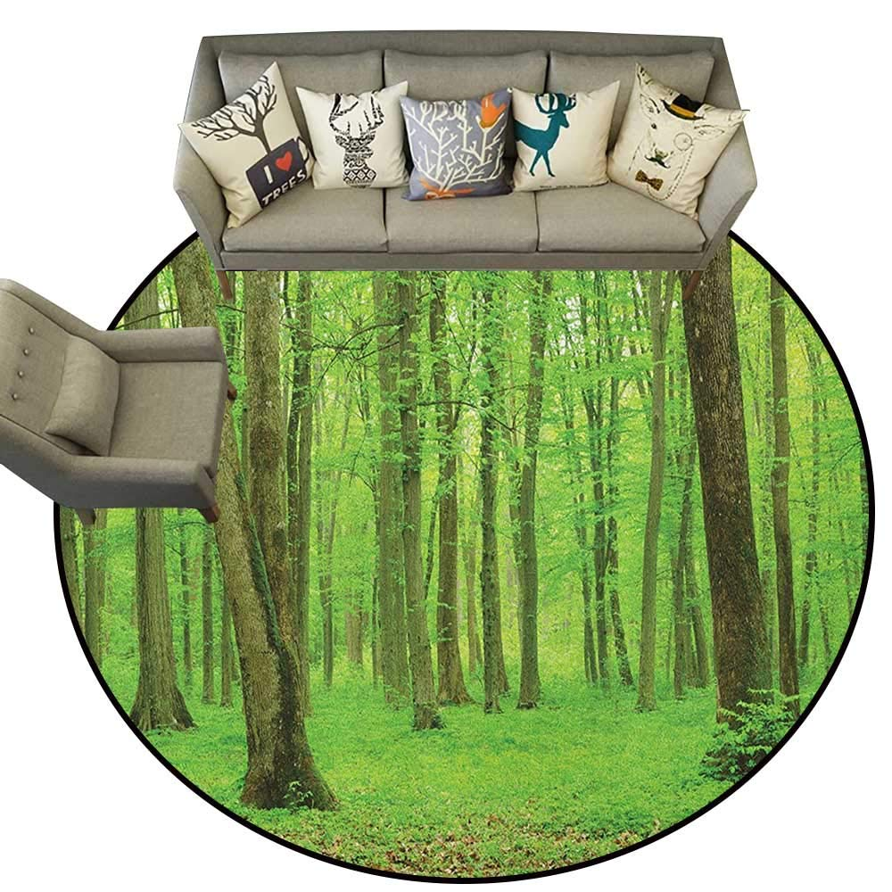 Style07 Diameter 54(inch& xFF09; Forest,Personalized Floor mats Winding Wooden Road Through National Park in Netherlands Northern Fall Forest D54 Floor Mat Entrance Doormat