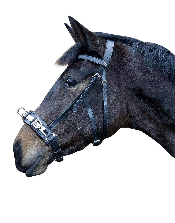 sport dello shopping online HKM cavezza in pelle, Nero, Nero, Nero, Pony  vendite calde
