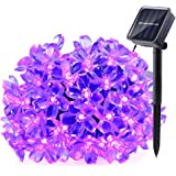 Qedertek Solar String Lights, 21ft 50 LED Fairy Blossom Flower Christmas Decorative Lighting for Outdoor, Home, Lawn, Garden, Wedding, Patio, Party and Thanksgiving Decorations (Purple)