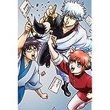 銀魂' (完全生産限定版) 全13巻セット [マーケットプレイス DVDセット]