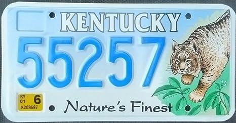 Us Nummernschild Kentucky Kennzeichen License Plate Auto Schild Küche Haushalt