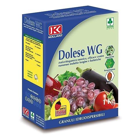 poltiglia bordolese 1kg  adama Kollant fungicida rameico Poltiglia Bordolese Dolese WG 1 kg ...