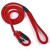 2013newestseller Pet Dog Whisperer Cesar Slip Training Leash Lead Collar (Red) by ArRord