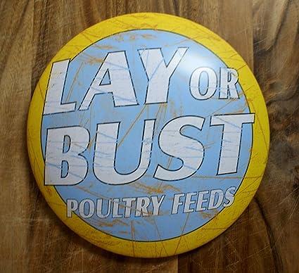 Amazon.com: Lay or Bust Aves de corral feeds clásico Sign de ...