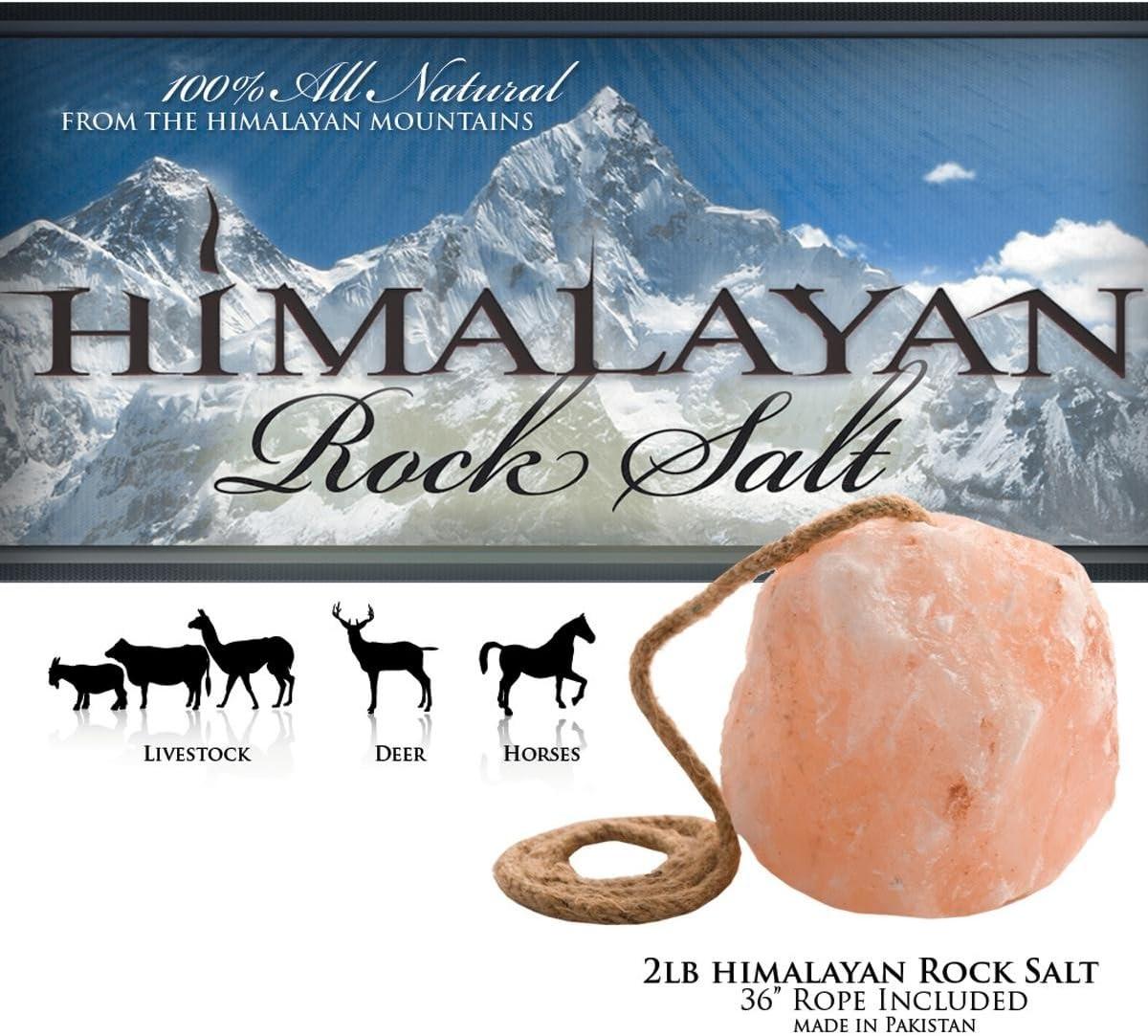 Sal de roca del Himalaya Lick On A Rope para caballos