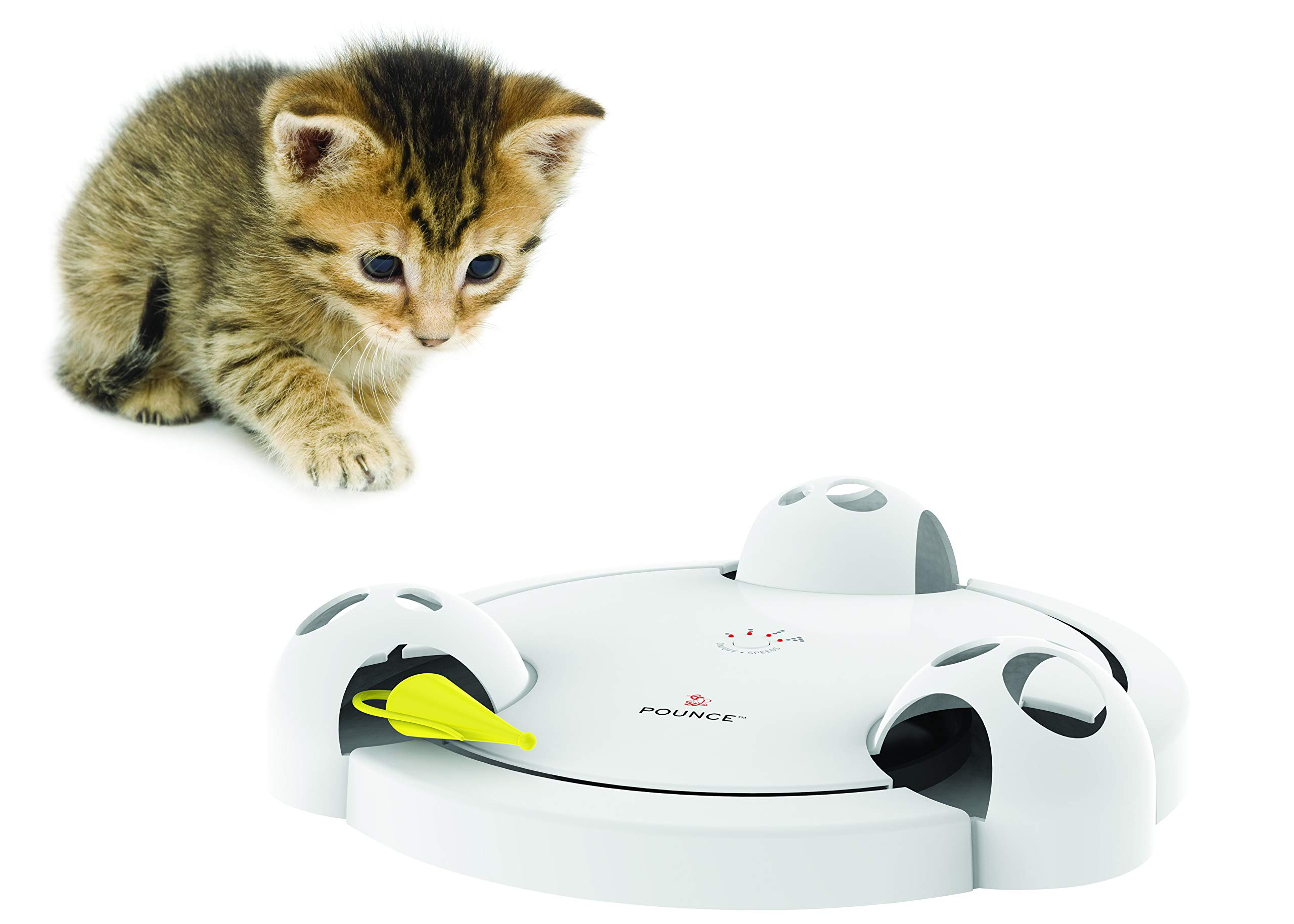 PetSafe Pounce Cat Toy, Interactive Automatic Toy for Cat or Kitten, Adjustable Electronic Battery Operated Toy by PetSafe