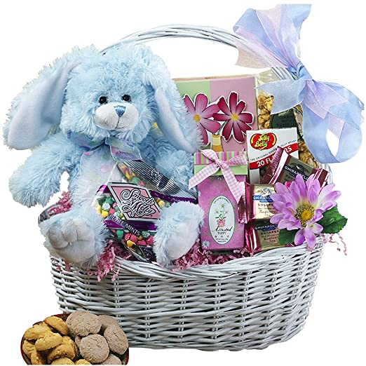 Amazon my special bunny easter gift basket with blue plush amazon my special bunny easter gift basket with blue plush bunny rabbit gourmet candy gifts grocery gourmet food negle Choice Image