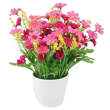 uxcell plástico Home Artificial Dasiy maceta Craft flor de escritorio Decoración de la mesa, color fucsia: Amazon.es: Hogar