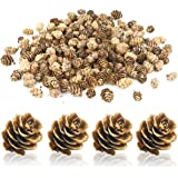 Hslife 200Pcs Mini Natural Pine Cones for Thangksgiving,Christmas,Autumn,Home Decorations Christmas Crafts and Gifts