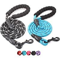 BAAPET 5 FT Strong Dog Leash with Comfortable Padded Handle and Highly Reflective Threads…