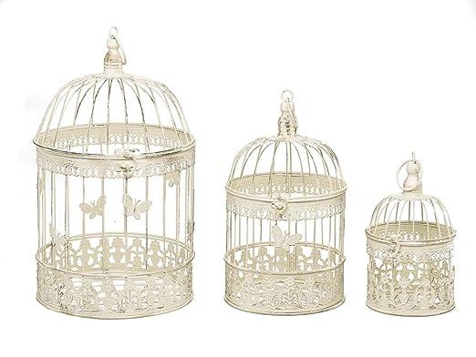 3 jaulas de pájaros de Jaula de Aves decoración del jardín ...
