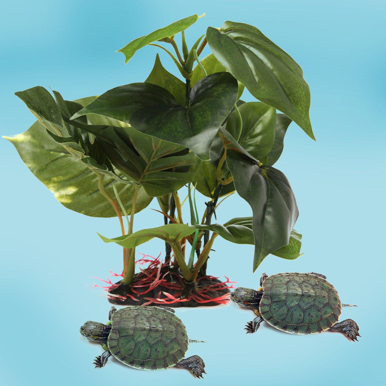 BEETEST Planta Plástico Decoración para Acuario Pecera artificial Acuático pescado tortuga tanque Acuario paisaje decoración ornamento: Amazon.es: Hogar