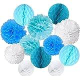 Recosis ペーパーフラワー フラワーポンポン ハニカムボール 飾り付け 結婚式 誕生日 飾り付け 紙花 - ライトブルー、ブルーとホワイト