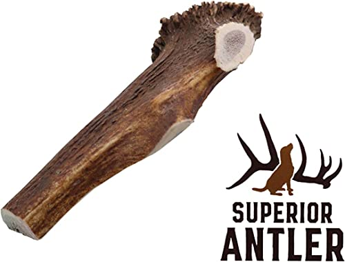 1-X Large Antler, Split, Single Pack – XL All Natural Premium Grade A. Antler Chew. Naturally Shed, Hand-Picked, and Made in The USA. NO Odor, NO Mess. Guaranteed Satisfaction. for Dogs 45 LBSL
