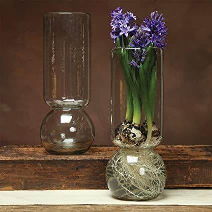 Amazon Grand Bulb Vase Recycled Home Kitchen
