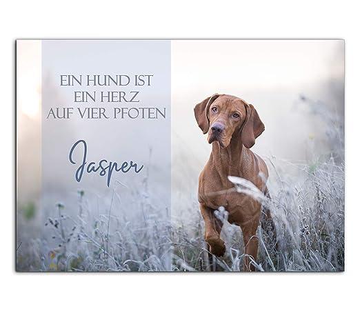 Cartel para puerta de perro con texto en alemán